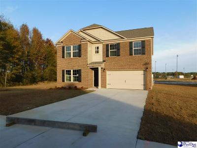 Florence County Single Family Home For Sale: 980 Grove Blvd