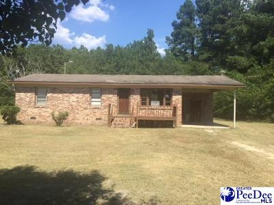 Dillon County Single Family Home For Sale: 138 Legion Drive