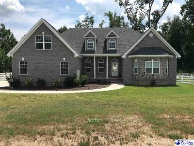 Darlington Single Family Home For Sale: 2744 Crickentree Lane
