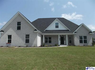 Florence County Single Family Home For Sale: 409 Brushbrook Dr.