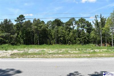 Effingham, Darlington, Darlington,, Darlinton, Florence, Flrorence Residential Lots & Land New: 1409 Fairlane Drive