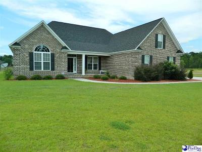 Florence County Single Family Home Uc/Show For Back Up: 3333 Shadow Creek Dr.