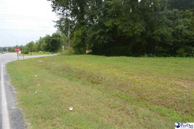Residential Lots & Land For Sale: Corner Of Washington & Currie