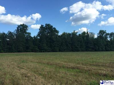 Effingham Residential Lots & Land For Sale: 4905 S Irby