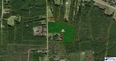 Effingham, Darlington, Darlinton, Florence, Flrorence, Marion, Pamplico, Timmonsville Residential Lots & Land For Sale: Cato Road
