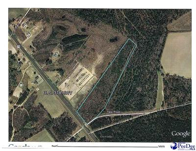 Effingham, Darlington, Darlinton, Florence, Flrorence, Marion, Pamplico, Timmonsville Residential Lots & Land Uc/Show For Back Up: 2005 Highway 378