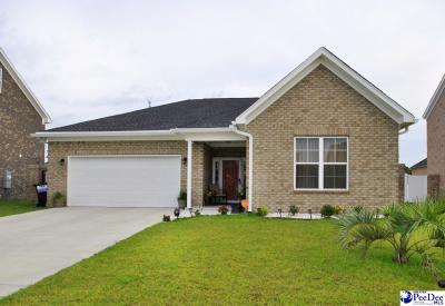 Florence Single Family Home For Sale: 3114 Breakwater Drive