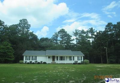 Darlington Single Family Home Uc/Show For Back Up: 1329 Ashley Oaks Drive