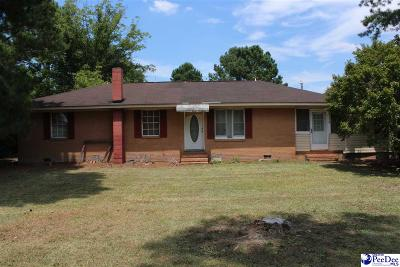 Single Family Home For Sale: 756 Lee State Park Rd