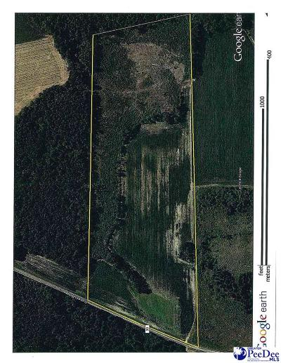Darlington County Residential Lots & Land For Sale: 2200 Cypress Rd