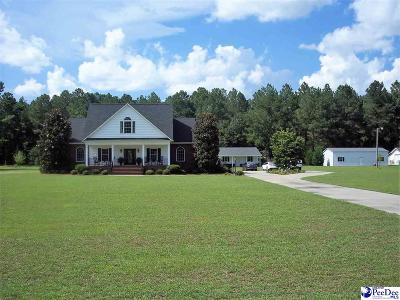 Dillon County Single Family Home For Sale: 757 Gum Swamp Road