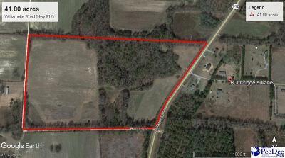Bennettsville Residential Lots & Land For Sale: Willamette Road