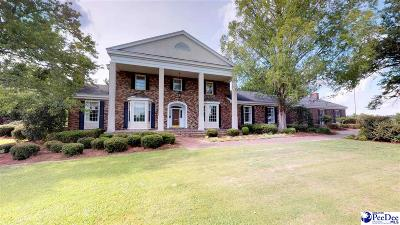 Effingham Single Family Home For Sale: 6419 Francis Marion Rd