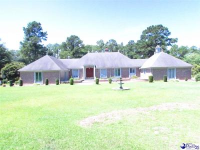 Darlington County Single Family Home For Sale: 634 Old Georgetown Rd