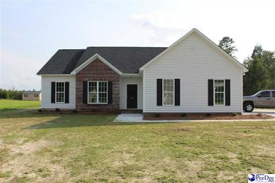 Florence Single Family Home New: 4460 Megan Rd