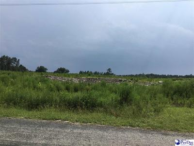 Johnsonville Residential Lots & Land For Sale: Gasters Rd