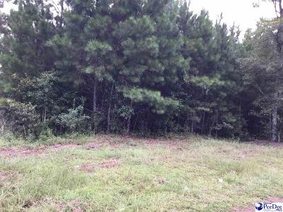 Hemingway Residential Lots & Land For Sale: Bruorton Rd