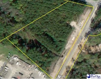 Florence, Flrorence, Pamplico Commercial Lots & Land For Sale: Tract 2 I-95 & W. Black Creek Road