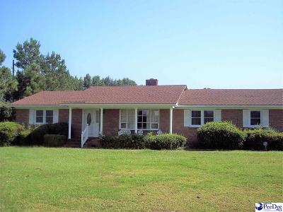 Dillon County Single Family Home For Sale: 1010 Skillet Road