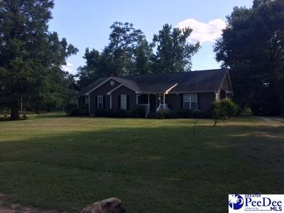 Single Family Home Active-Extended: 537 Truett Loop