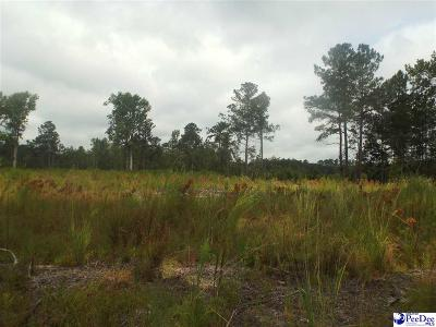 Marion County Residential Lots & Land For Sale: E Sellers Road
