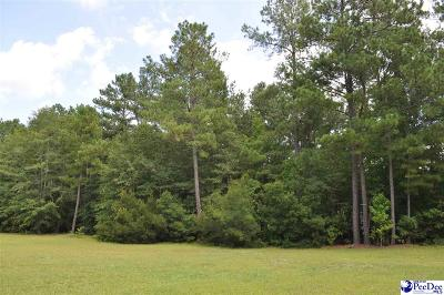 Marion County Residential Lots & Land For Sale: Lot 6 Butler Road