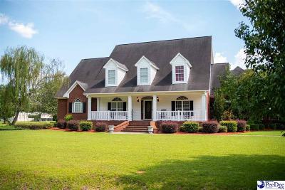 Latta Single Family Home For Sale: 266 Johnson Road