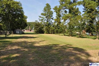 Marion County Residential Lots & Land For Sale: 507 Upland Avenue