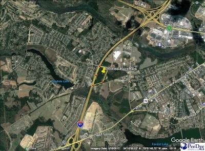 Florence, Flrorence, Pamplico Commercial Lots & Land For Sale: Pine Needles Rd
