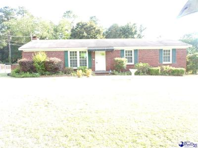 Florence Single Family Home For Sale: 616 Delaware River Dr.
