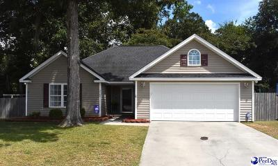 Effingham Single Family Home Uc/Show For Back Up: 2100 Tillers Plow Row