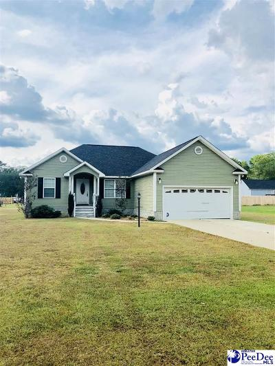 Darlington County Single Family Home For Sale: 207 Lawson Rd.