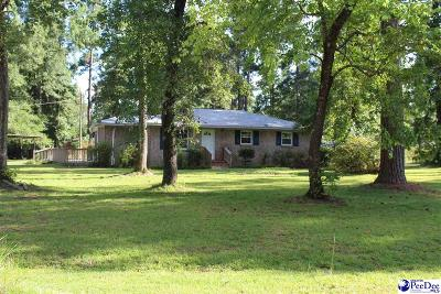 Marion SC Single Family Home For Sale: $62,500