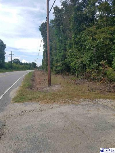 Bennettsville Residential Lots & Land For Sale: East Main Street Ext