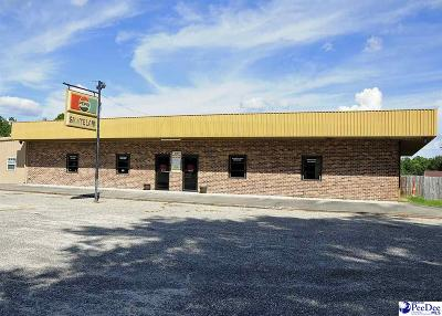 Florence, Flrorence, Marion, Pamplico Commercial For Sale: 4524 W Highway 76