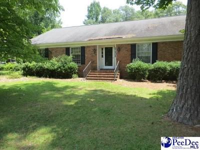 Darlington Single Family Home For Sale: 117 Oklahoma Dr