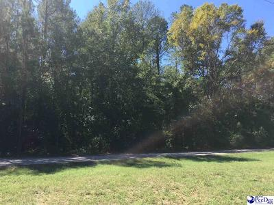 Residential Lots & Land For Sale: Lot 1 Dunlap Dr
