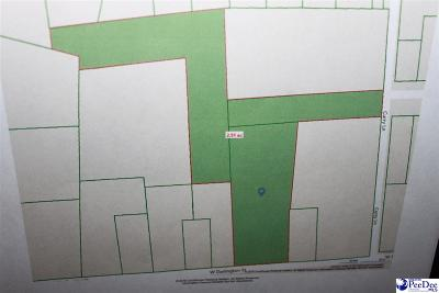 Florence, Flrorence, Marion, Pamplico Commercial Lots & Land For Sale: 1307 W Darlington St.