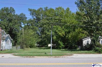 Florence, Flrorence, Marion, Pamplico Commercial Lots & Land For Sale: 201 E Liberty Street