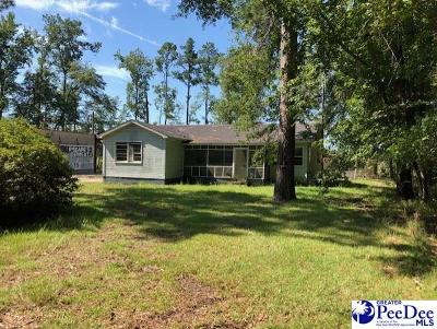 Kingstree Single Family Home For Sale: 2624 & 2632 Thurgood Marshall Hwy