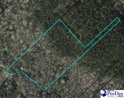 Summerton SC Residential Lots & Land For Sale: $16,000