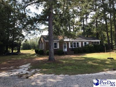 Latta Single Family Home For Sale: 119 Golden Mack