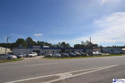 Commercial For Sale: 5010 S Irby Street