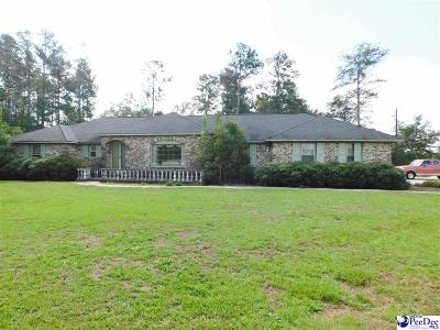Darlington Single Family Home For Sale: 1725 Harry Byrd Highway