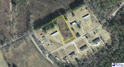 Marion County Residential Lots & Land For Sale: Tbd Jimmy's Ct