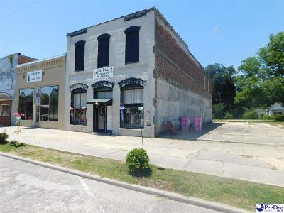 Dillon County Commercial For Sale: 204 Richard Temple Blvd.