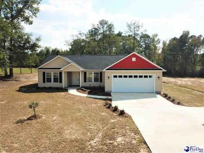 Latta Single Family Home For Sale: 312 Pocosin Road