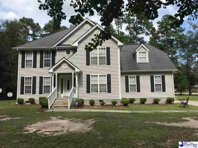 Kingstree Single Family Home For Sale: 20 Horton