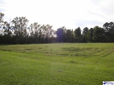 Florence County Residential Lots & Land Active-Price Change: 3515 Hopkins Ct