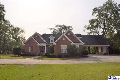 Single Family Home New: 3521 Woodlake Drive